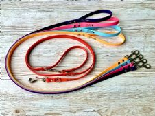 4 x BioThane® Standard Leads + 1 x Double Ended Lead Bundle